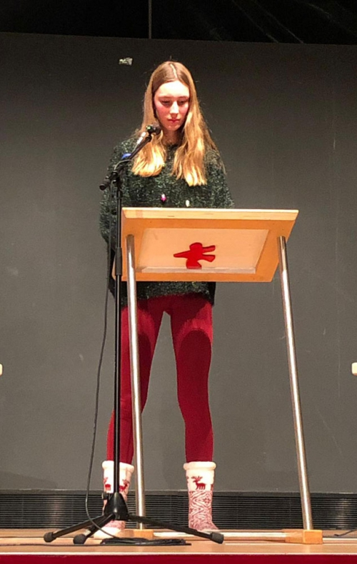 Christmas Debate Poem by Lotta Scheffel